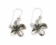E170 Silver flower earrings