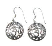 E72 ohm earrings