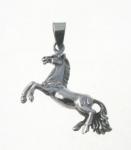 P251 Horse on Hind Legs