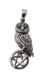 P349 Owl on Pentagram Pendant