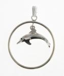 P306 Dolphin in hoop.