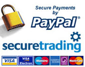 Secure online payments via paypal